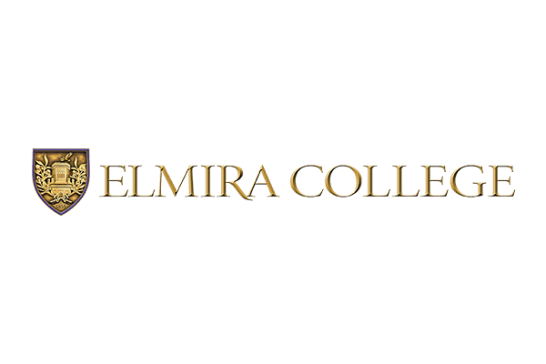 environmental health safety consulting firm for elmira college
